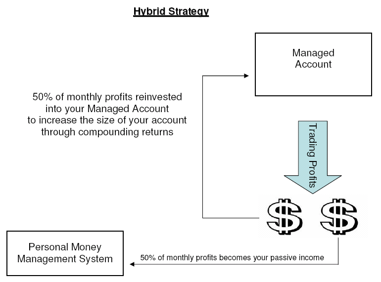 Hybrid Income Strategy Visual Details